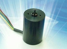 Micro Brushless DC Motor(007)