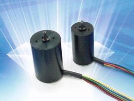 Micro Brushless DC Motor(017)