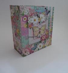 中號印刷紙袋工藝袋鑽石+上粉