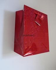 medium hologram paper bag