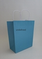 medium colorful kraft paper bag-aqua