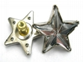 Star Shaped acrylic stone rivet