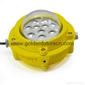 ip65 60w led explosion proof light for chemical plant,oil store,gas station 2