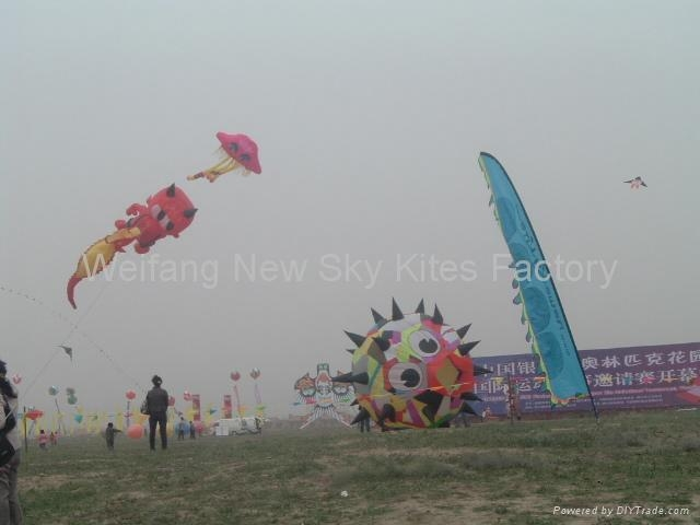 At August 2009 Weifang Surfing kite festival