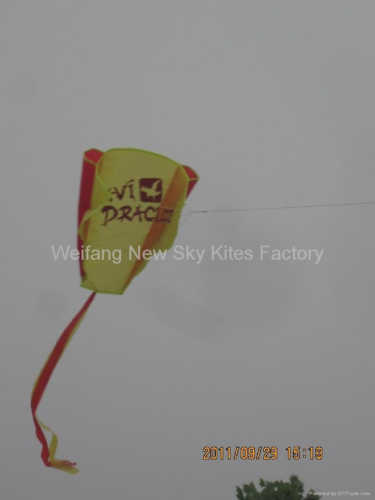 Pocket advertising kite (80x45cm)
