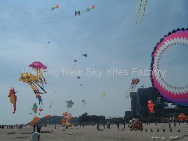 October 2009 in Shenzhen kite festival