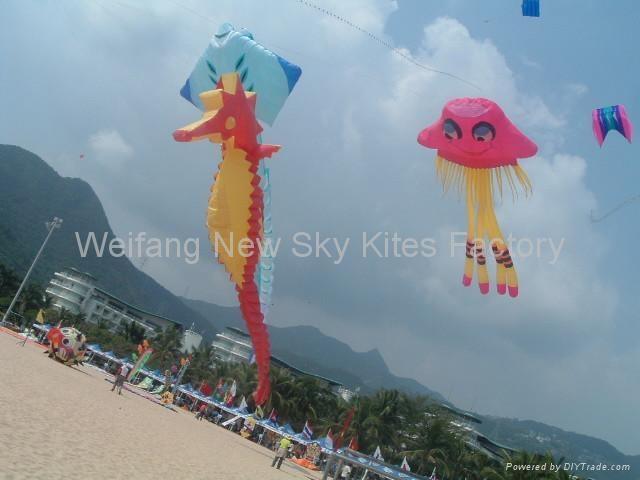 2009年10月末在深圳风筝节