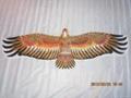 2021 Hawk kite