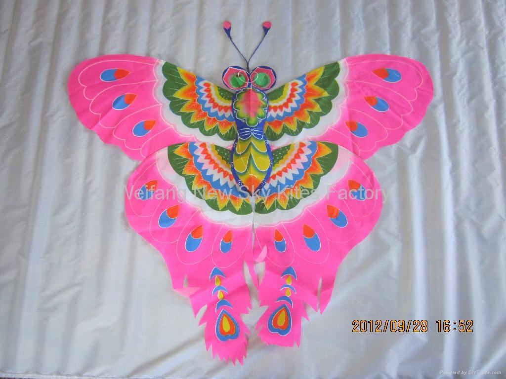 2007  彩蝶
