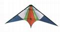 1910  特技風箏