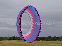 5108 Ring kite