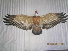 2028  Hawk