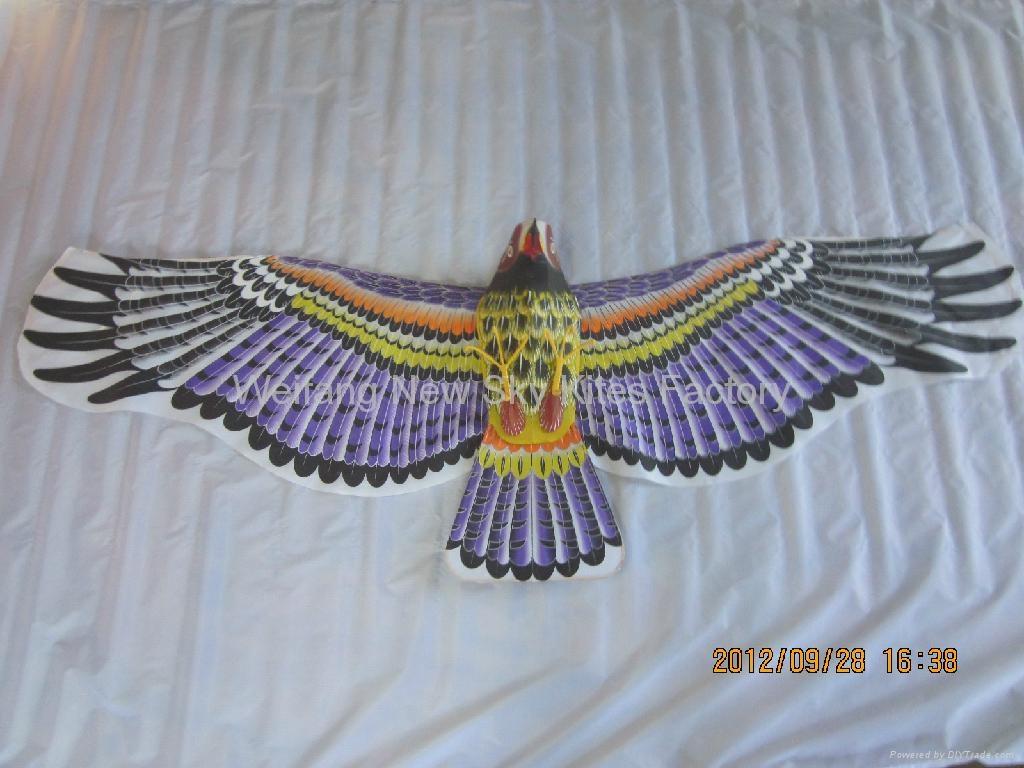 2029 Hawk 1
