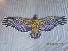 2029 Hawk