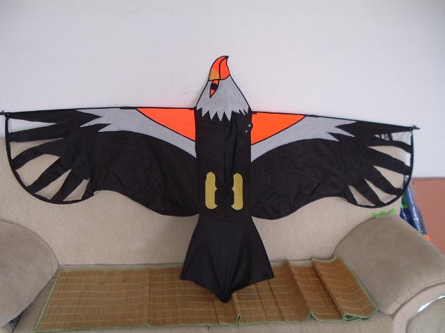 1859 Hawk of victory