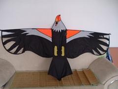 1859 勝利之鷹