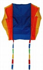 3002   Pocket Kite
