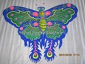 2009 蝴蝶