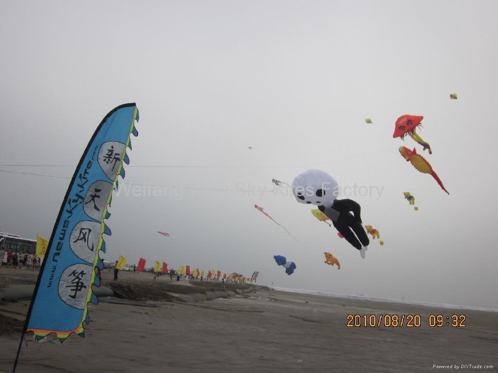 2nd Weifang Surfing kite festival (August 2010)