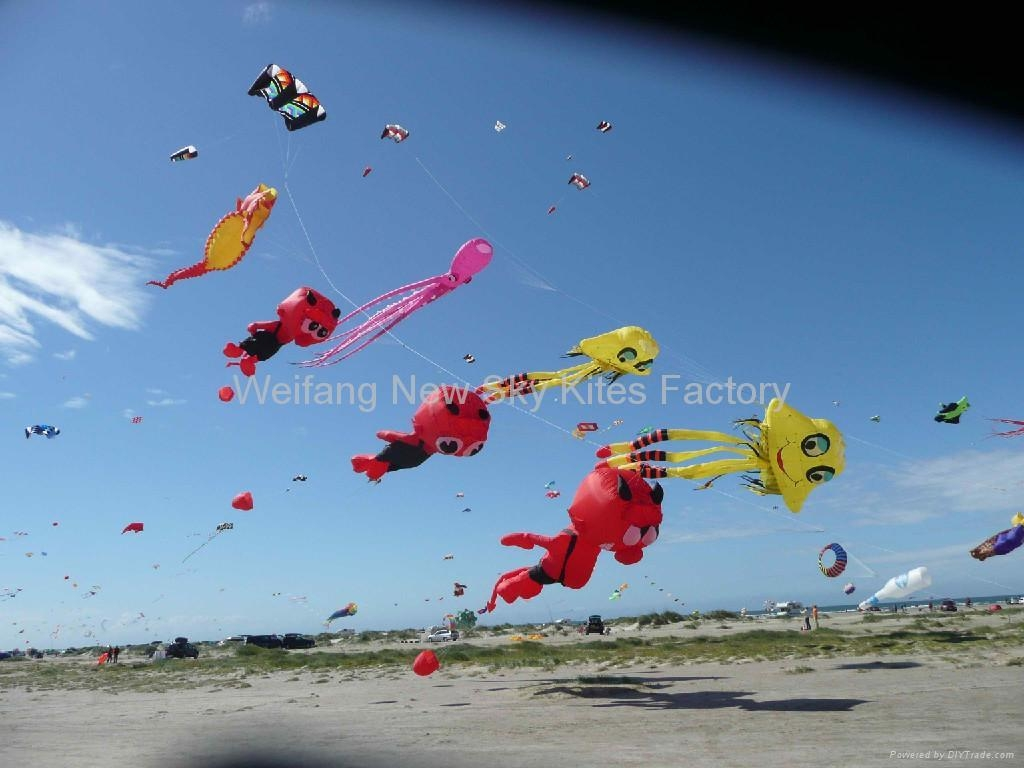 Our Varatia devil kites in Denmark
