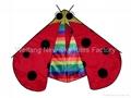 7026 Lady bug