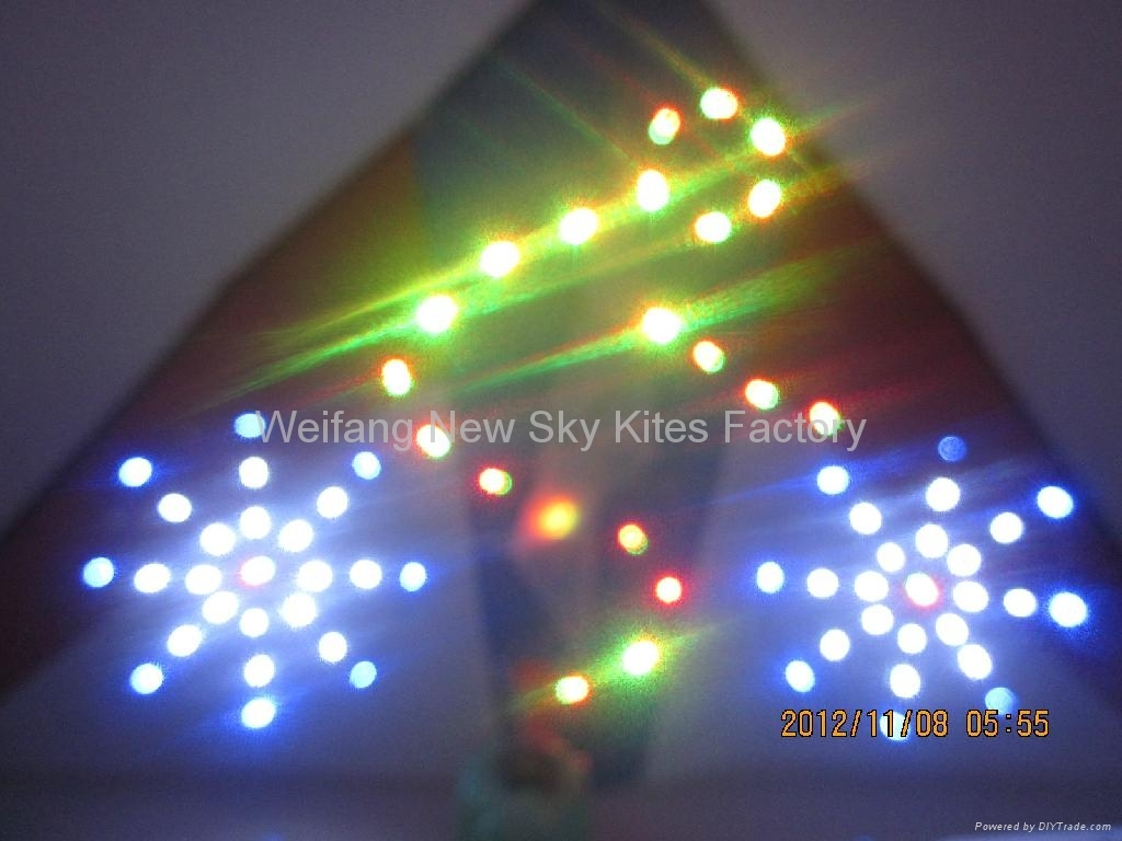 Won a price at night kite contest in the 7th Shenzhen kite festival (2012.11.04)