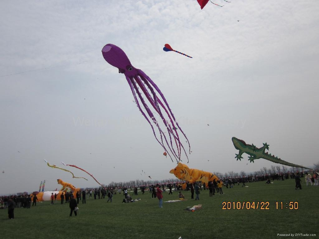 Best inflatable kite of 2010 WF kite festival