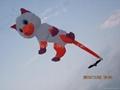 3241 白猫风筝  2