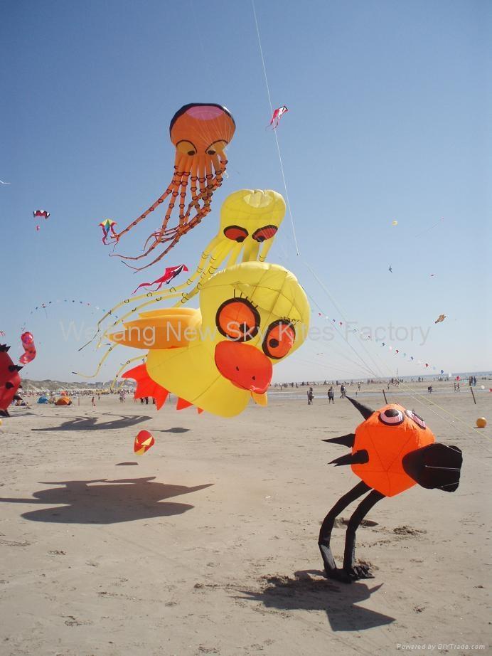 3290  沙滩鸟 2