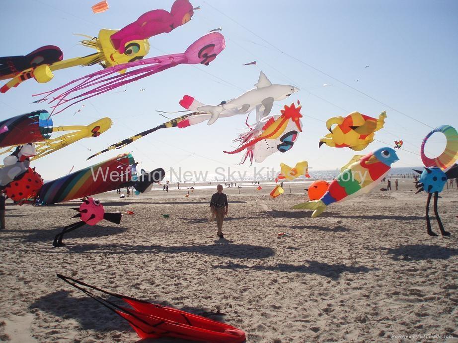 3290  沙滩鸟 4