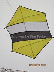 7006 Hexagon kite