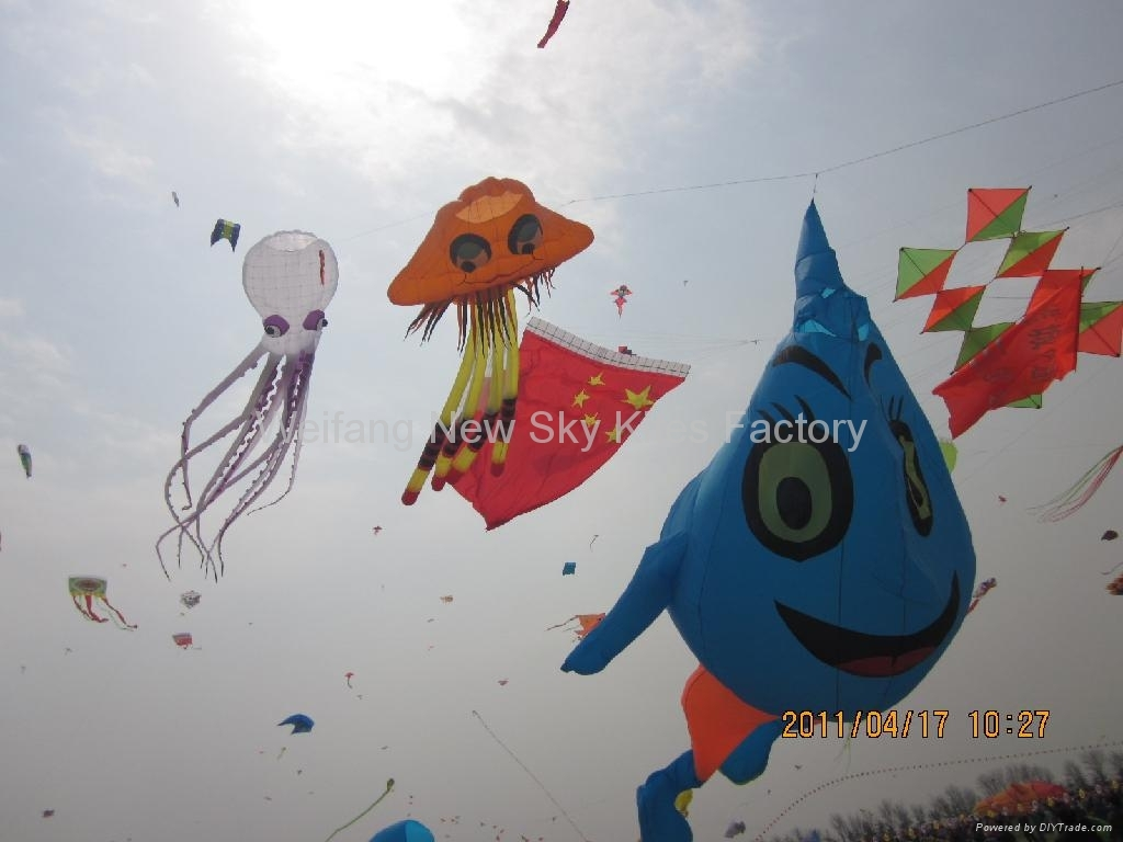 Biggest kite of 2011 WF kite festival (60M long)
