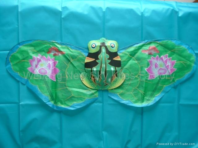 2066 Frog