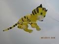 3238 虎猫风筝  2