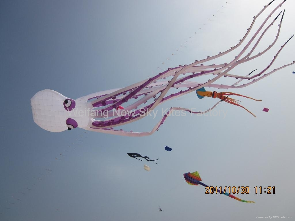 The 6th Dameisha kite festival