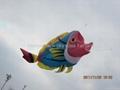 3210 Hot fish