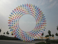 5155 Spiky ring kite