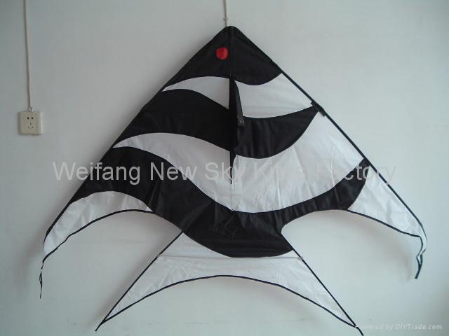 1856A,B 斑马鱼 2