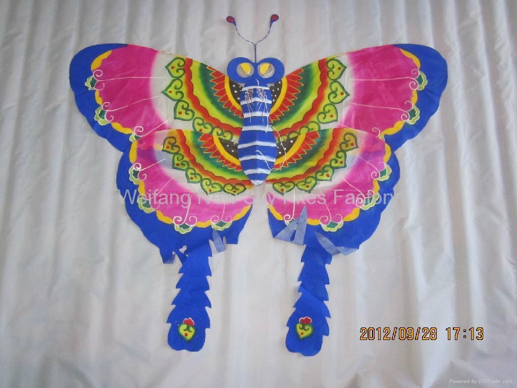 2008 真絲蝴蝶 2