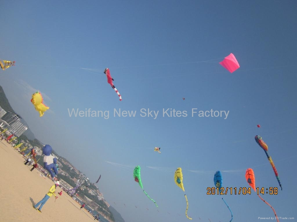 Leaf kites in 7th Shenzhen kite festival(4th,Nov,2012)