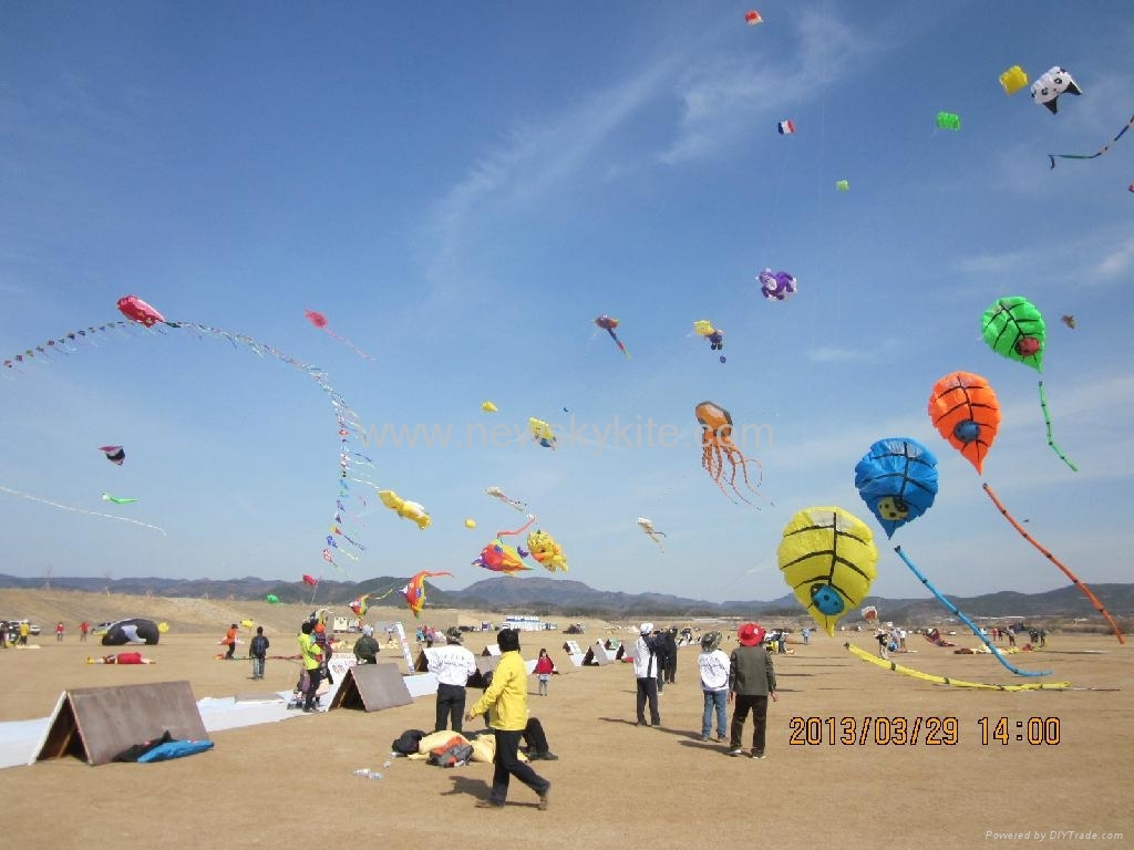 3rd Uiseong International Flying Kite Competition(28th~31th,March,2013)