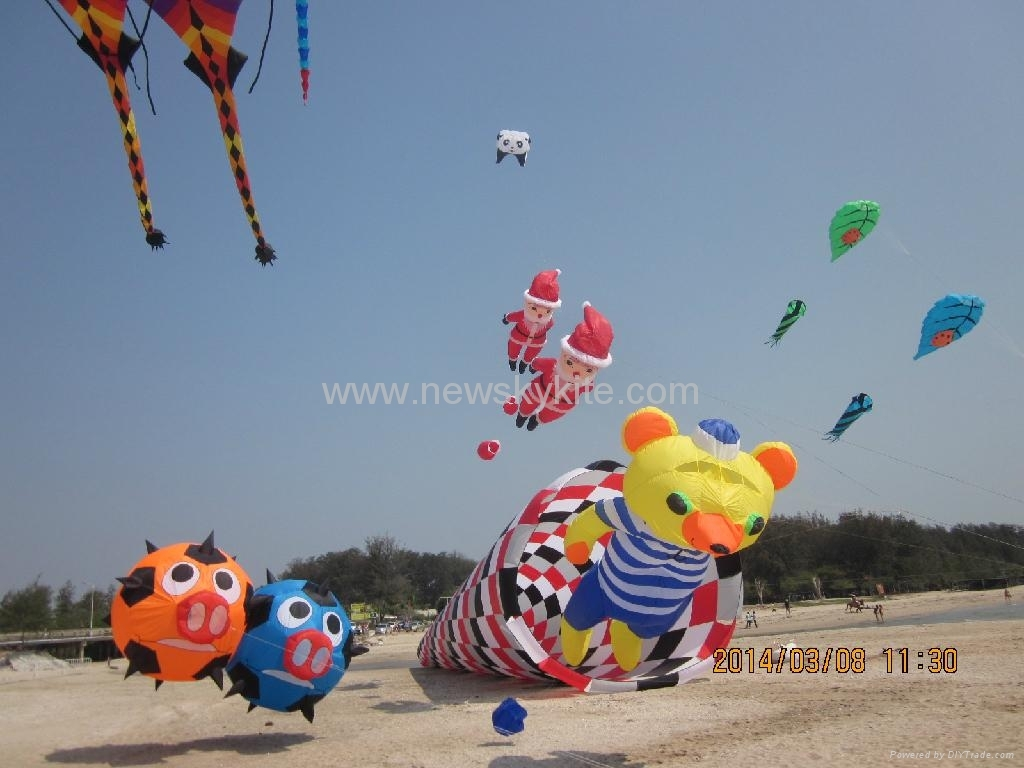 Our kite at Thailand kite festival (9th,March,2014)
