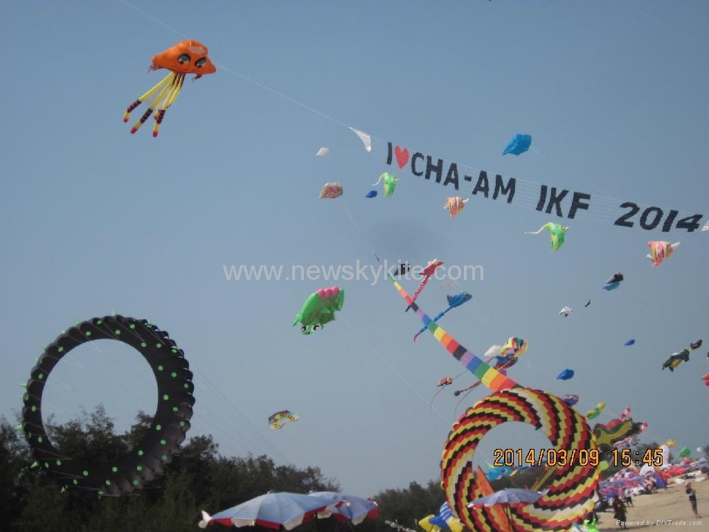 2014 Thailand kite festival (8th,March)