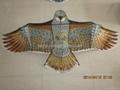 1880 大鹰