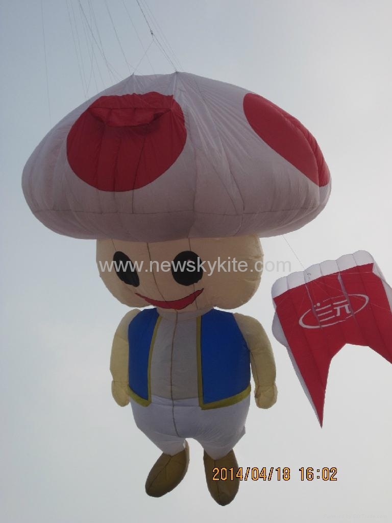 Best inflatable kites in 2014 WF kite festival