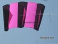 3133 骨架領航風箏