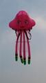 3128 Small Jellyfish