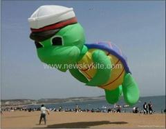 3253  軍帽海龜