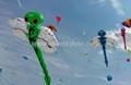 3286 蜻蜓