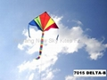 7015  Delta kite